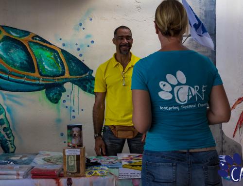 CARF organiseert adoptie evenement 'Coffee Cups & Rescue Pups' bij Dive City