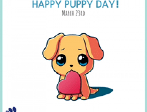 It's #InternationalPuppyDay, possibly the cutest day of the year! Show us your fur babies…