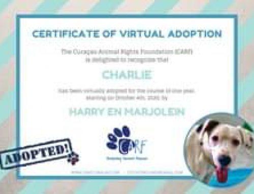 Wat een geweldig nieuws voor onze Charlie! Onze lieve vrienden en trouwe supporters Harr…