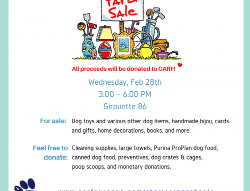 Shop For Charity: CARF Porch Sale