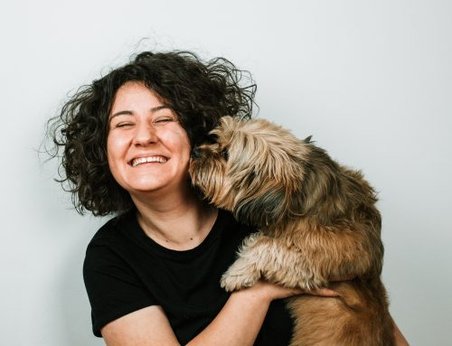 Mother's Day 2020 | Virtually Adopt a Curaçao Dog for Mom