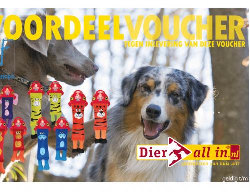 Werelddierendag voor alle CARFIES in Nederland: speciale actie door Dier All-In